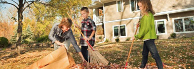 Learn more about Fall yard waste collection reminders image