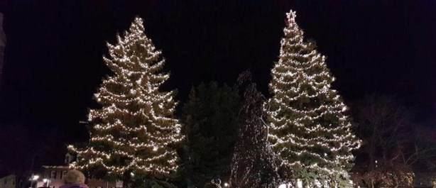 Tree Lighting image